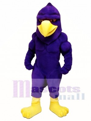 Power Hawk Mascot Costume