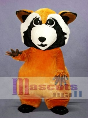Little Cute Raccoon Mascot Costume