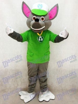 Paw Patrol Recycling Ecology Pup Rocky Mascot Character Costume Eco Pup