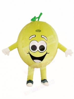 Happy Lemon Lime Mascot Costumes Fruit Plant
