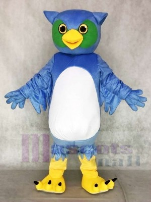 Cute Blue and Green Owl Mascot Costumes Animal