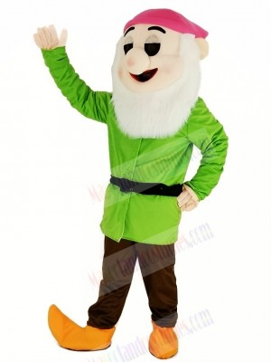 Dwarfs with Green Coat Mascot Costume