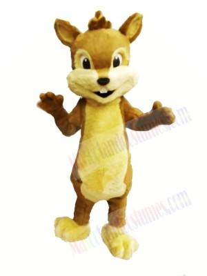 Cute Furry Chipmunk Mascot Costumes