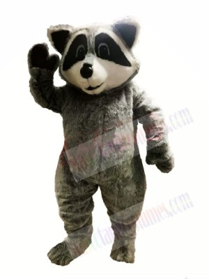 Cute Lightweight Raccoon Mascot Costumes