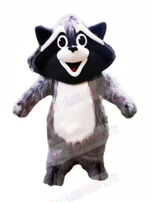 Cute Grey Raccoon Mascot Costumes Animal