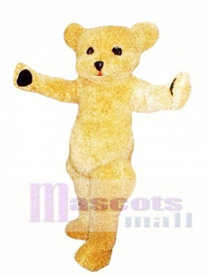 Teddy Bear Mascot Costume Adult Costume