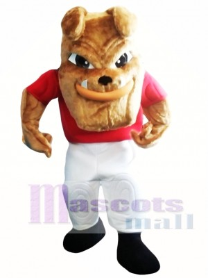 Bulldog Mascot Costume Adult Costume