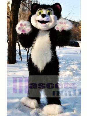 Cute Cat Mascot Costume