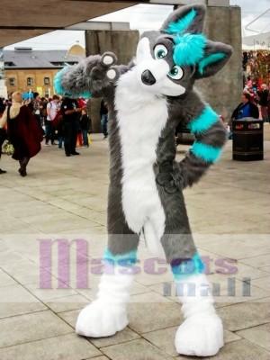 Gray and Blue Husky Dog Fursuit Mascot Costume