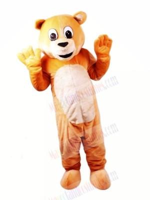 Honey Bear Mascot Costumes Cartoon