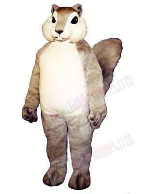 Grey Squirrel Mascot Costume Animal