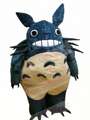 Cute Totoro Mascot Costumes Cartoon