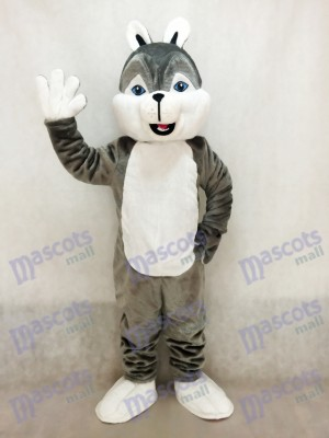Cute Gray Husky Dog Mascot Costume