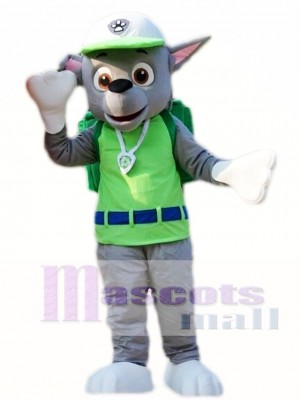 Paw Patrol Rocky Recycling Ecology Dog Pup Mascot Costume