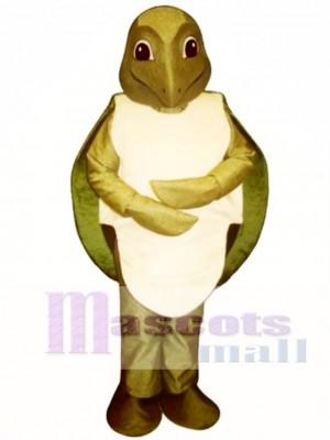 Sea Turtle Mascot Costume
