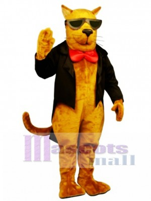 Cute Strayed Cat Mascot Costume Animal