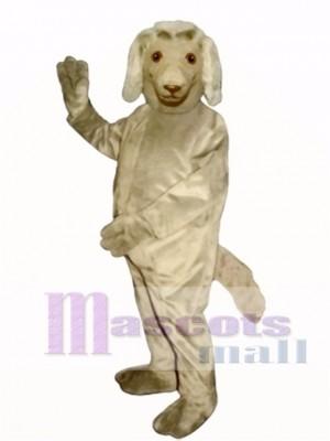 Cute Afghan Dog Mascot Costume Animal
