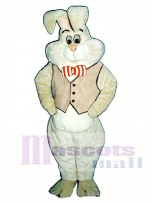 Easter March Hare Bunny Rabbit Mascot Costume Animal