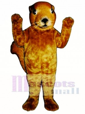 Realistic Squirrel Mascot Costume Animal