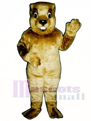Groundhog Mascot Costume Animal