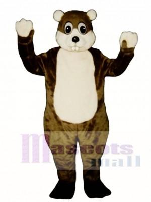 Woodchuck Mascot Costume Animal
