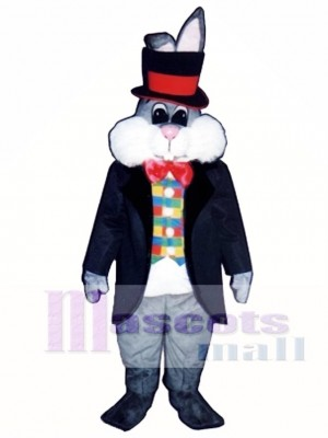 Cute Easter Bunny Rabbit In Hat Mascot Costume Animal