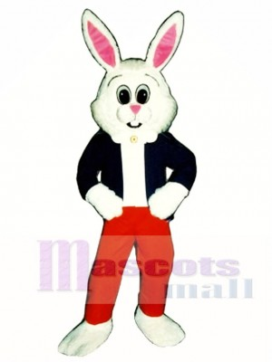 Easter Hare Bunny Rabbit Mascot Costume Animal