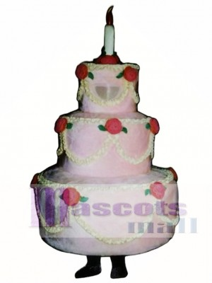 Three-Layer Cake Mascot Costume