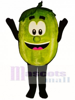 Wally Watermelon Mascot Costume Fruit