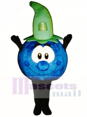 Bobby Blueberry Mascot Costume Plant