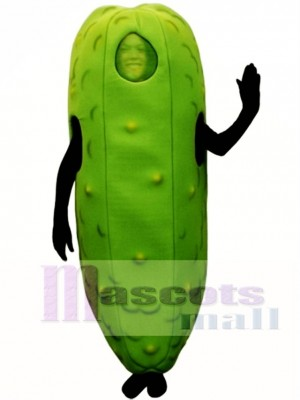 Dill Pickle Mascot Costume Fruit