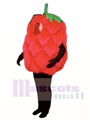 Fresh Raspberry Mascot Costume Fruit