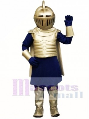 Silver Knight Mascot Costume People