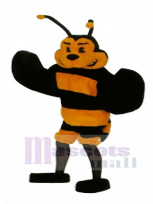 Bee Mascot Costume Insect