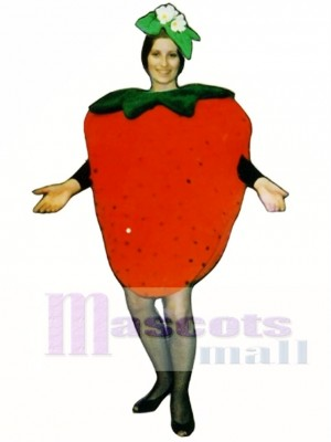 Strawberry Mascot Costume Plant