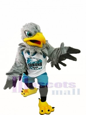 Eagle Mascot Costume High School Mascot Costume Animal