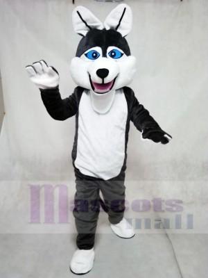 Timber Wolf Mascot Costumes Animal