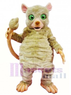 Gray Mouse Lemur Monkey Mascot Costumes Animal
