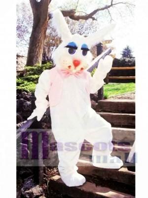 Peter Rabbit Bunny Mascot Costume Animal
