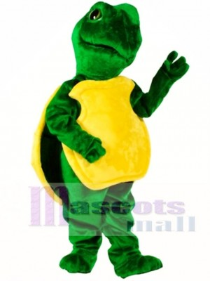 Turtle Mascot Costume Animal