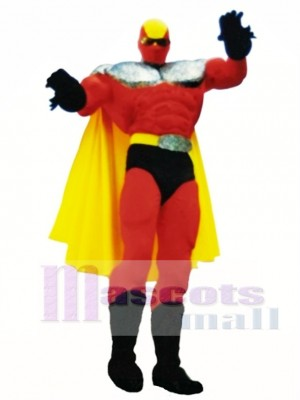 Superhero Mascot Costume People
