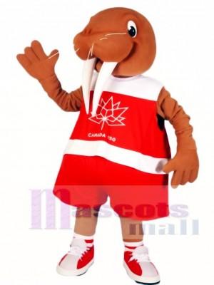 Cute Walrus Mascot Costumes Ocean