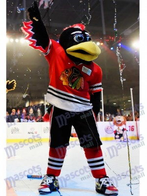 Chicago Blackhawks Tommy Hawk Mascot Costume