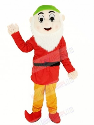Dwarfs with Red Coat and Green Hat Mascot Costume