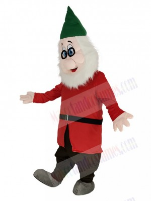 Doc Clever Dwarfs with Green Hat Mascot Costume Cartoon