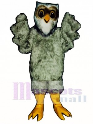 Cute Storybook Owl Mascot Costume