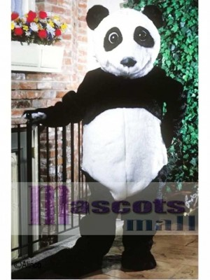 Panda Bear Mascot Costume Animal