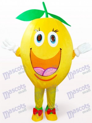 Fruit Orange Plush Mascot Costume