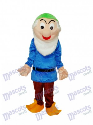Dwarfs 2 Mascot Adult Costume Cartoon Anime
