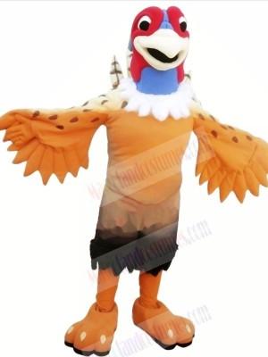 Nice Pheasant Mascot Costumes Cartoon